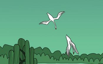 Il lago dei cigni a fumetti