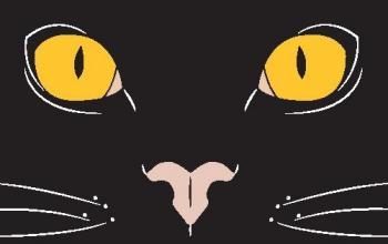 Il libro dei gatti immaginari
