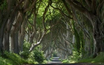 Il Winterfell Festival in Irlanda interamente dedicato al Trono di Spade