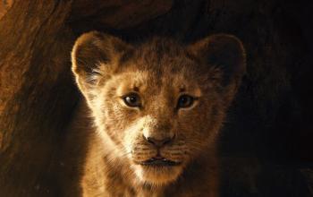 Primo trailer per Il Re Leone in versione live action