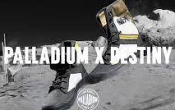 Bungie e Palladium insieme per Destiny 2