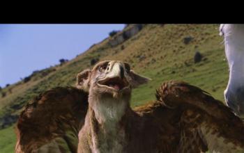 Le cronache di Narnia torneranno su Netflix
