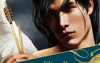 Elisa Rosso presenta Il Principe delle Nebbie