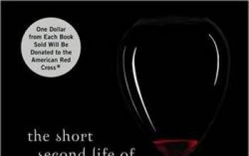 La breve seconda vita di Bree Tanner, il nuovo libro della Twilight saga