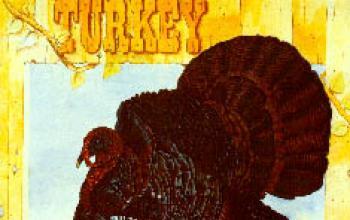 Itullians.com presenta i Wild Turkey