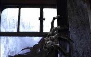 Il nuovo trailer del Prigioniero di Azkaban