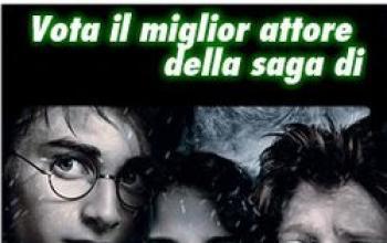 Harry Potter e La Bacchetta d'Oro
