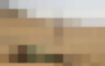 Harry Potter per adulti