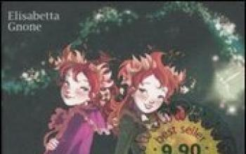 Il segreto delle Gemelle. Fairy Oak, vol 1