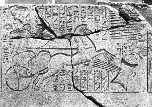 EGITTO La straordinaria scoperta del Faraone Amenofi II a Milano