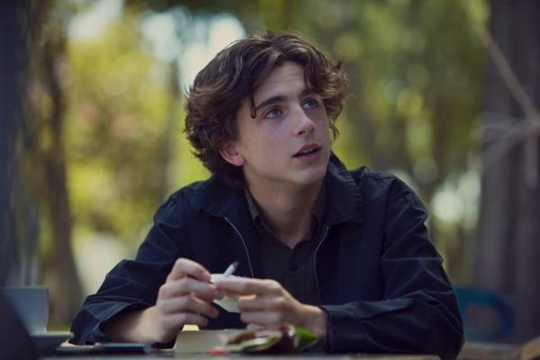 Timothée Chalamet in una scena di Lady Bird.