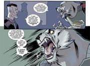 «Il lupo perde il pelo... non il vizio.»