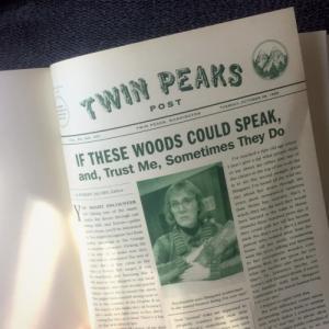 Una pagina dell'edizione originale di Le vite segrete di Twin Peaks.
