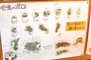 Boro The Caterpillar, schizzi