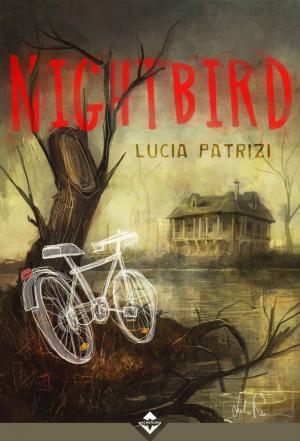 Nightbird - Illustrazione di Giulio Rincione - Grafica CirceCorp.