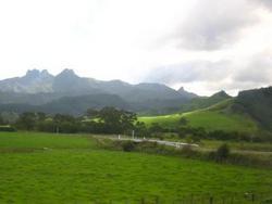 La campagna della Nuova Zelanda