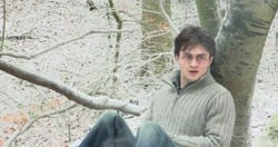 Daniel Radcliffe in una scena di Harry Potter e i Doni della Morte