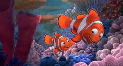 Marlin e Nemo