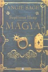 La copertina del primo volume della serie Septimus Heap