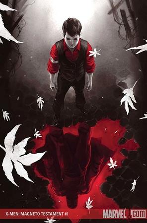 La copertina del primo numero della miniserie