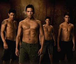 Da sinistra: Paul (Alex Meraz), Sam (Chaske Spencer), Jared (Bronson Pelletier) e Embry (Kiowa Gordon).
