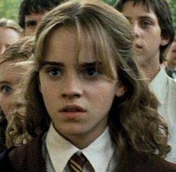 Hermione Granger è una mezzosangue e al secondo anno correrà un grave pericolo