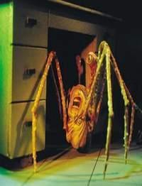 Il ragno anomalo della Cosa