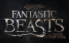Logo, foto dal set e sito ufficiale di Gli animali fantastici: dove trovarli!