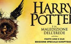 Intorno a Harry Potter e la maledizione dell'erede