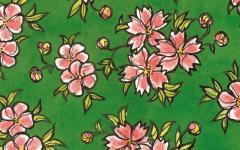 Vanna Vinci e Frida Khalo: dialogo tra arte e memento mori