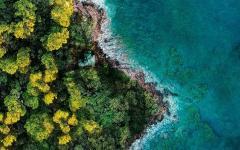 Fantasy Island: arrivano trailer, poster e sinossi ufficiale
