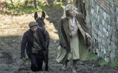 Aspromonte – La terra degli ultimi, al cinema