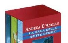 Il Giorno di Andrea D'Angelo