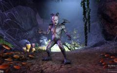 I cuccioli di The Elder Scrolls Online: Tamriel Unlimited
