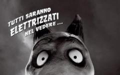 Frankenweenie di Tim Burton: tutti gli aggiornamenti