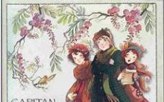 Naufragio a Fairy Oak