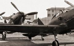 Cartomanti, piloti e micromostri