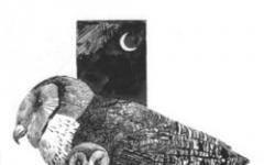 L'arte di Sergio Toppi a Seregno dal 23 settembre al 21 ottobre 2007