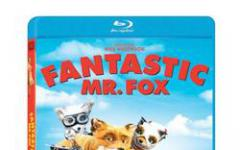 Fantastic Mr. Fox in Home Video