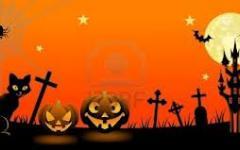 Halloween: un incontro per sfatare le false credenze sul gatto nero