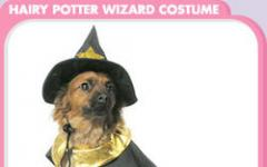 Un Halloween... da cani