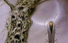 I vincitori dei Premi Lovecraft e Alien