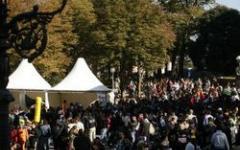 Si chiude Lucca C&G: le novità, i giochi e il successo di un'edizione ambiziosa