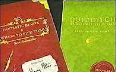 Harry Potter di nuovo vittima dei ladri