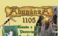 Adunanza 1105