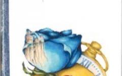 Blu Rose nella terra dei maghi