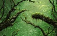 Prima occhiata all'enigma di Gaia