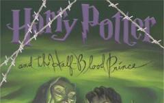 Harry Potter blindato