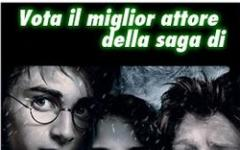 Harry Potter e La Bacchetta d'Oro