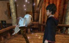 Nel labirinto della scuola di Hogwarts
